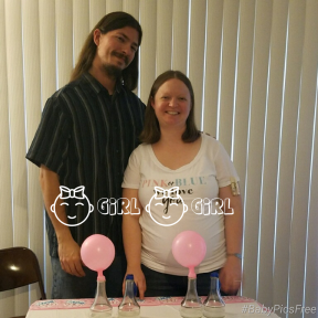 twin-girl-gender-reveal