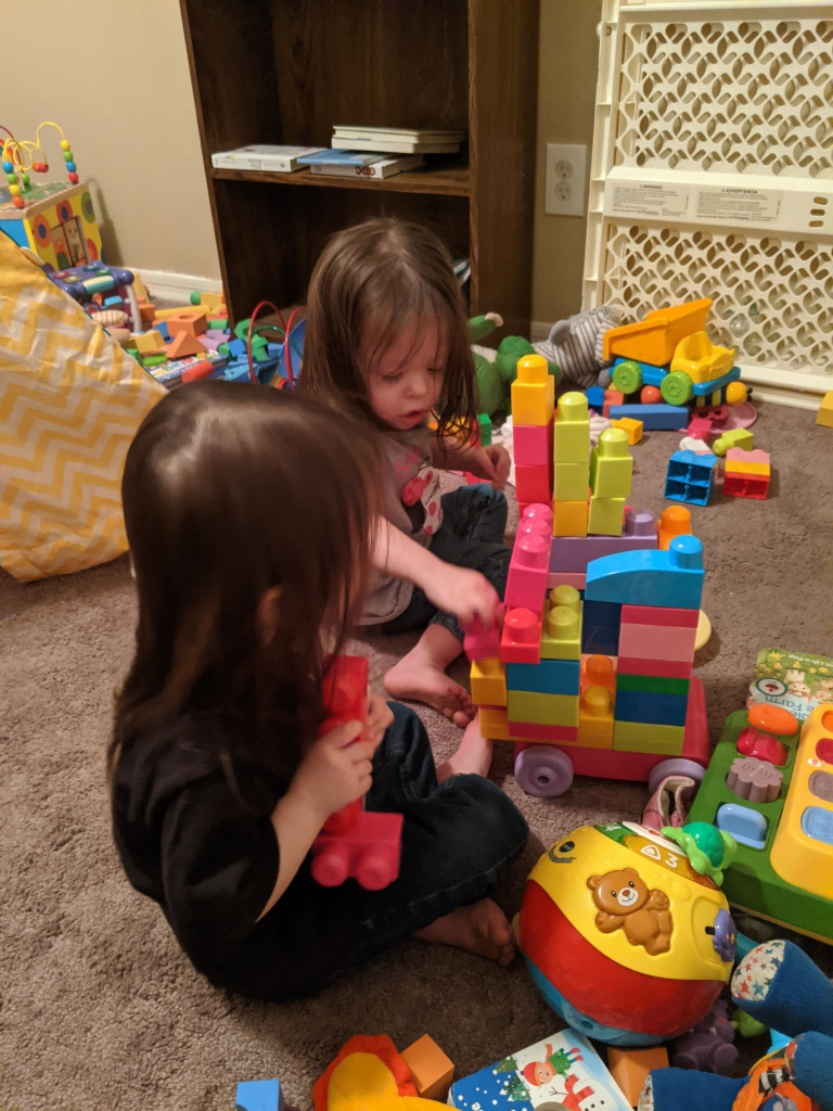 The Twins Building with Blocks together